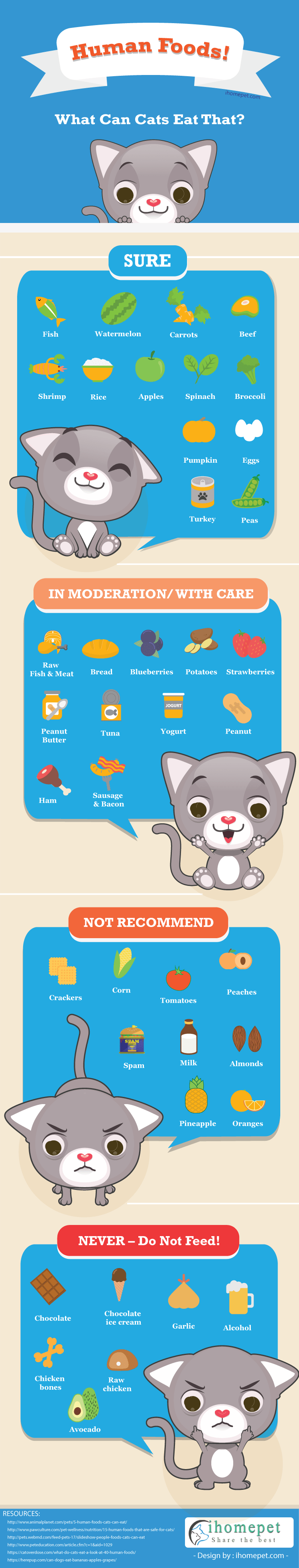 What You Can Feed Your Cat Apart From Cat Food Infographic Foods Cats Can Eat Cat Food Vegan Cat Food