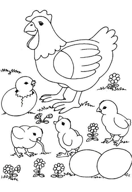 Gallina Para Colorear Lminas de la gallina imagui  Proyectos que