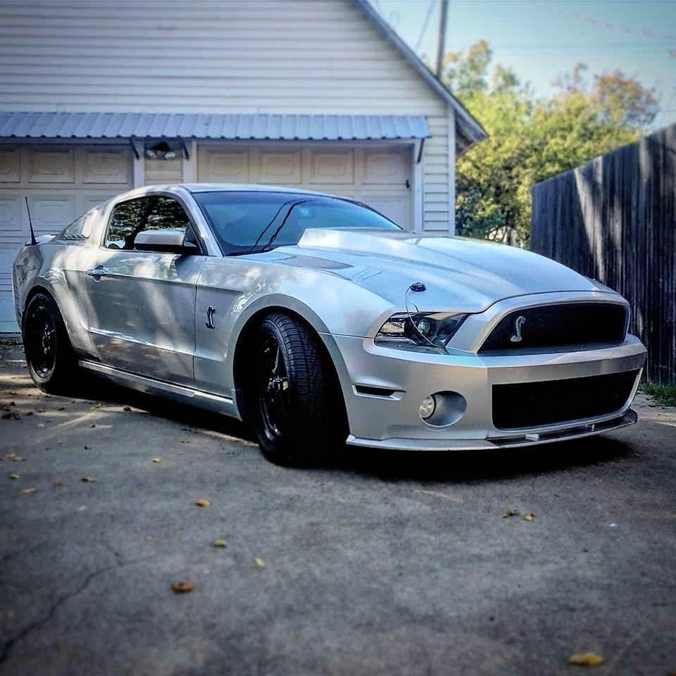 New ford mustang mustang cars modern muscle cars shelby gt500 carnation