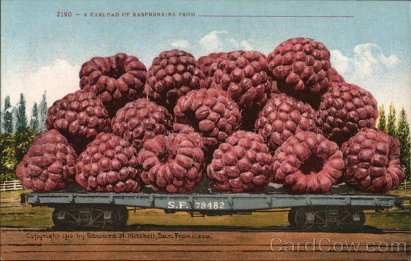 Carload of Raspberries Exaggeration
