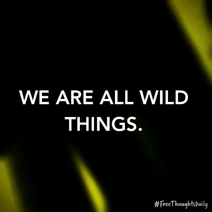 #FreeThought: We are all wild things. #FreeThoughtsDaily #motivation #inspiration #truth #quote #quoteoftheday #inspire #qotd #wisdom #inspired #thoughts #inspirational #motivational #lifequotes #quotestoliveby #thought #wordporn #thoughtoftheday #inspirationalquote #quotefortheday #inspireme #wordgasm #inspirationoftheday #wisdomquotes