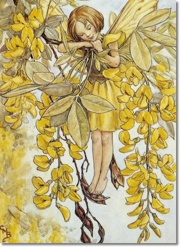 Cicely Mary Barker - Flower Fairies of the Trees - The Laburnum Fairy