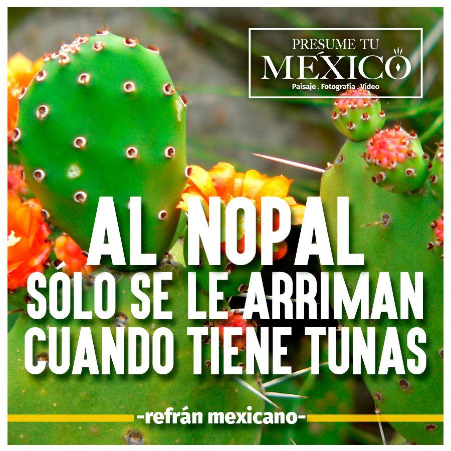 Pin de Presume Tu México en Refránes | Que te mejores y ...