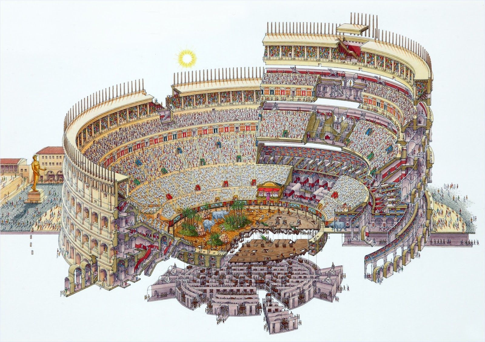 Colosseum Section Drawing Colosseum Flavian Amphitheater