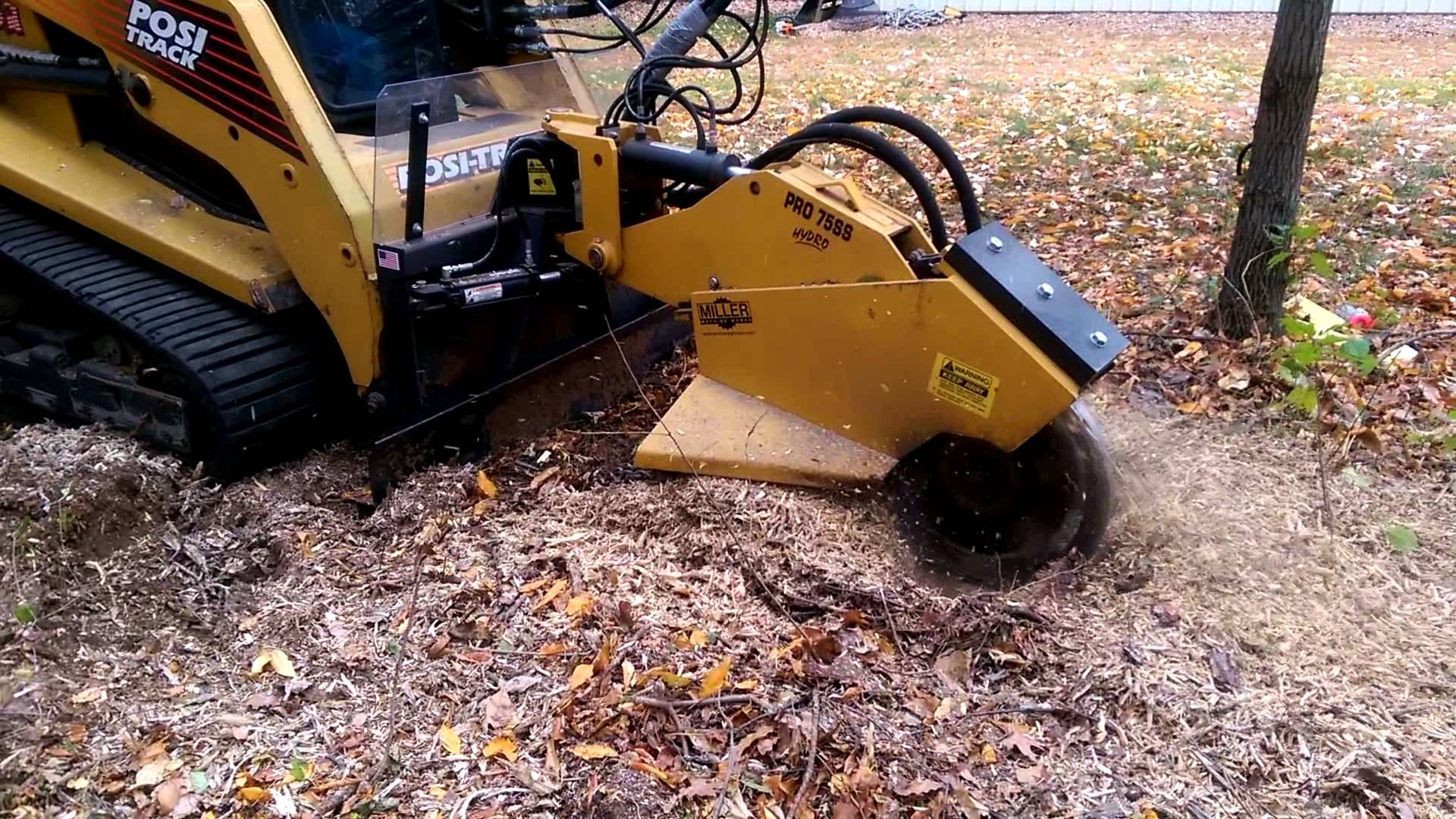 Charles tree services offers the best stump_grinding