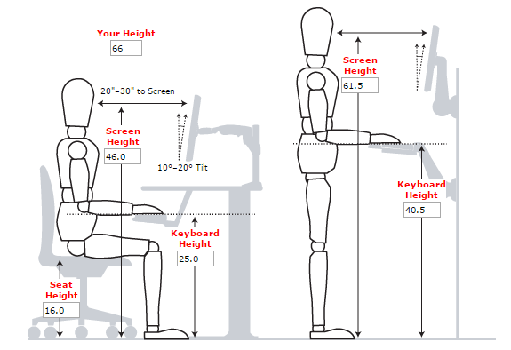 Ergonomic Workstation Based On Height Of 5 6 Standing Desk Ergonomics Desk Dimensions Standing Desk Height