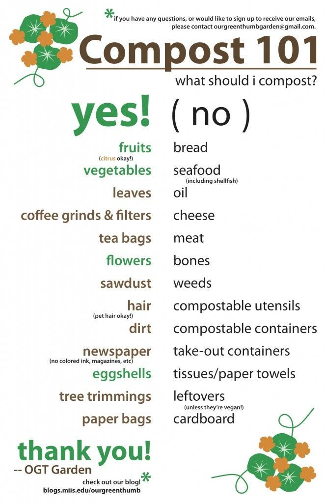 printable for what to compost u0026 what not to compost i was surprised about a