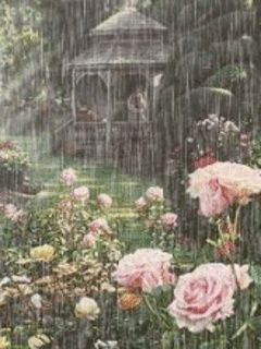 Spring showers | Spring showers | DEW DROPS & RAIN