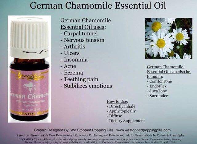 German Chamomile Living Essentials Oils Essential Oils Herbs Essential Oils Aromatherapy
