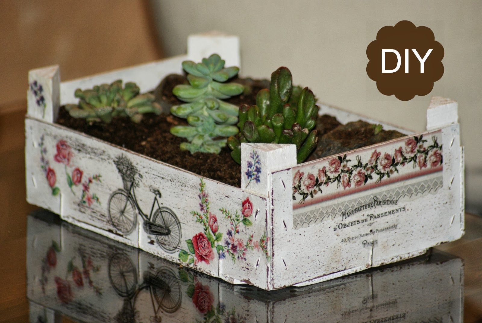 Reciclaje caja de fruta diy jard n de crasas macetas - Manualidades con cajas de frutas ...