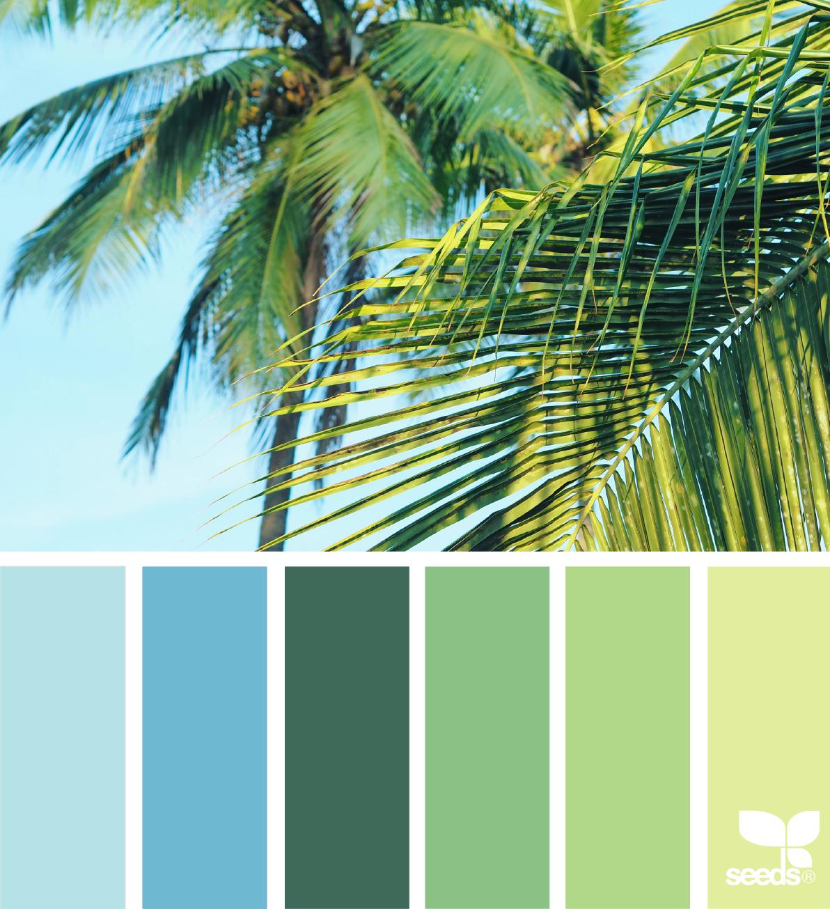 tropical hues }   image via: @arasacud ... #color #palette ...