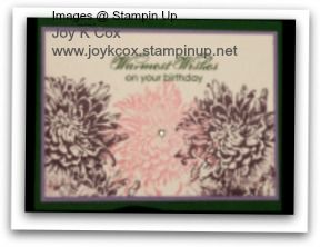 Blooming with Kindness.  All cardstock, images and embellishments are from Stampin Up.  www.joykcox.stampinup.net