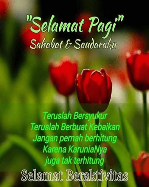 Gambar Kata Ucapan Selamat Pagi Gambar Bunga - Download