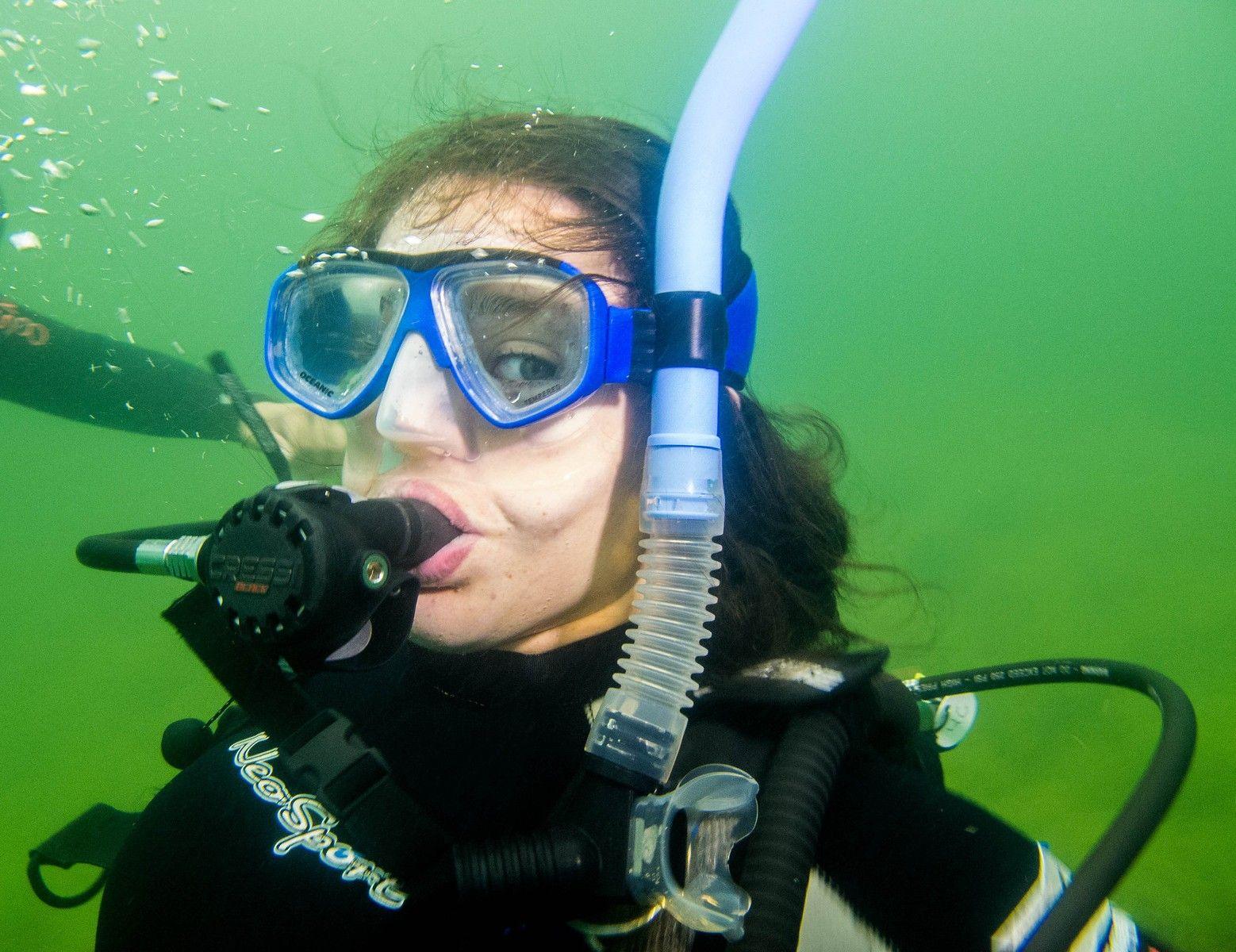 Фотография морж отдыхает на борту подводной лодки что собой
