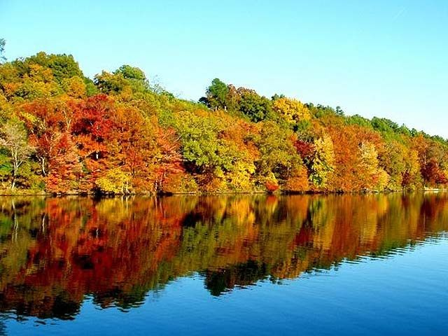 Fall colours on Lake Manitoba at Narrows West
