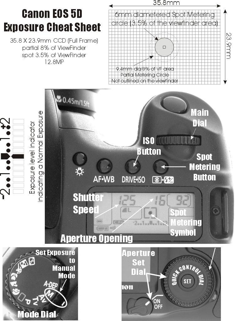 Canon 5D Spot Metering: Diagram | photography tips and
