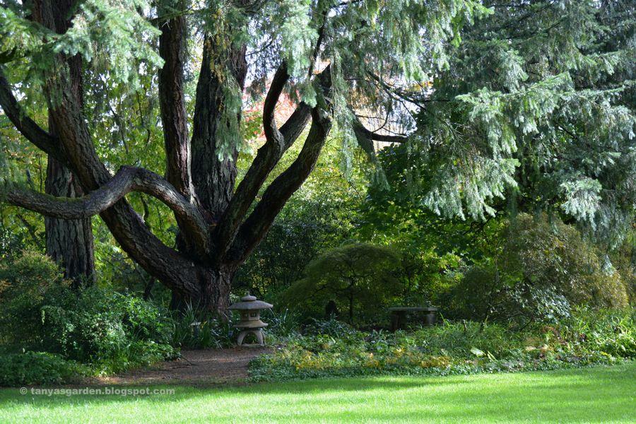 Pin by Jennie Clements on Garden Ideas Garden, Garden s