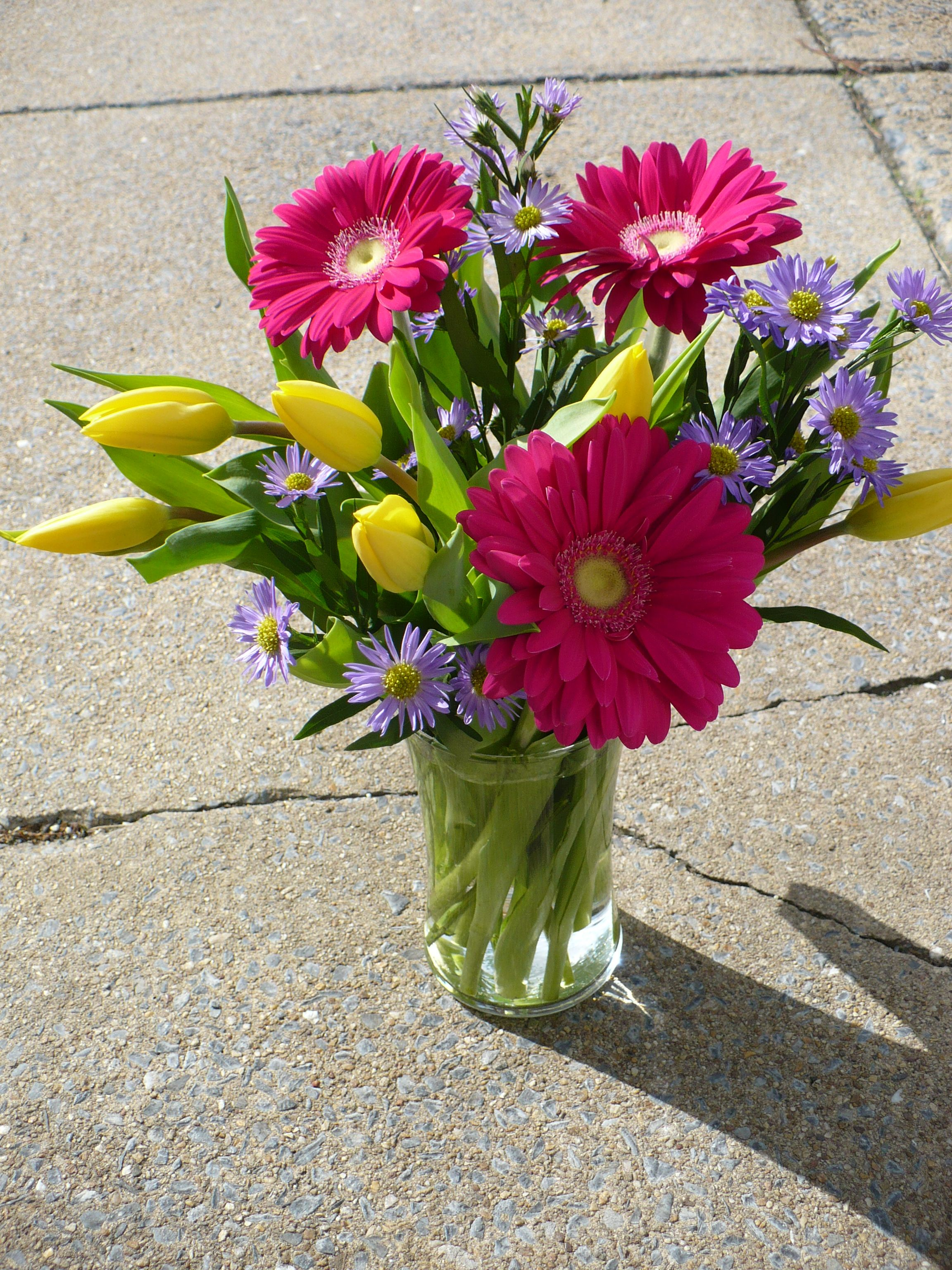 Gerbera Daisies Tulips And Purple Wild Daisies Flowers For Any
