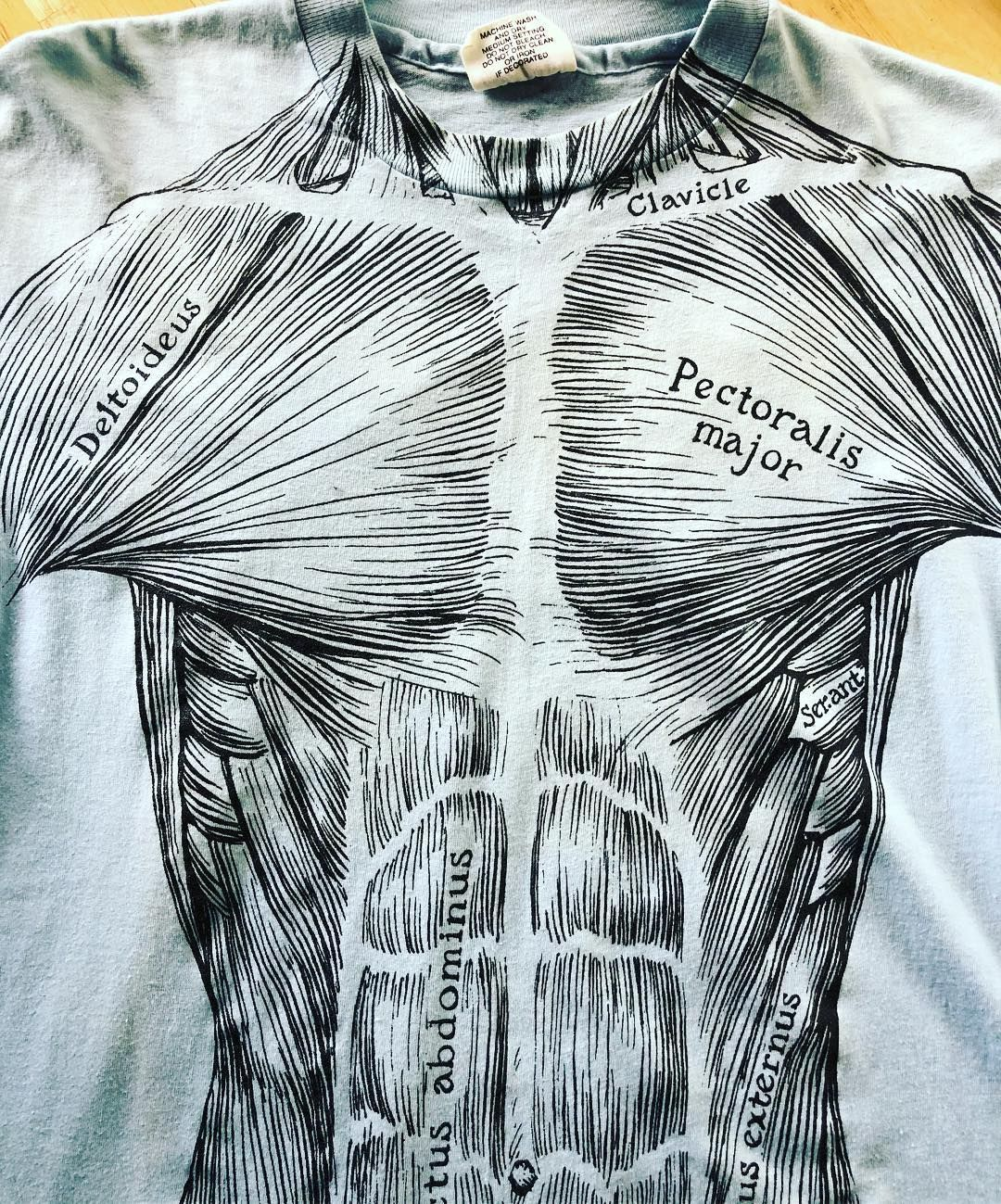 True Vintage Muscle T Shirt Leslie Arwin Bova 70s Size L Anatomy