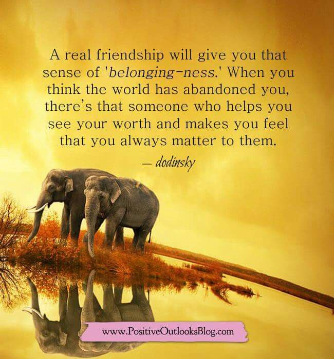 Thank You Friends For Making My Day A Little Brighter With Your Pins Deanna S Real Friendship Elephant Quotes Words To Live By Quotes