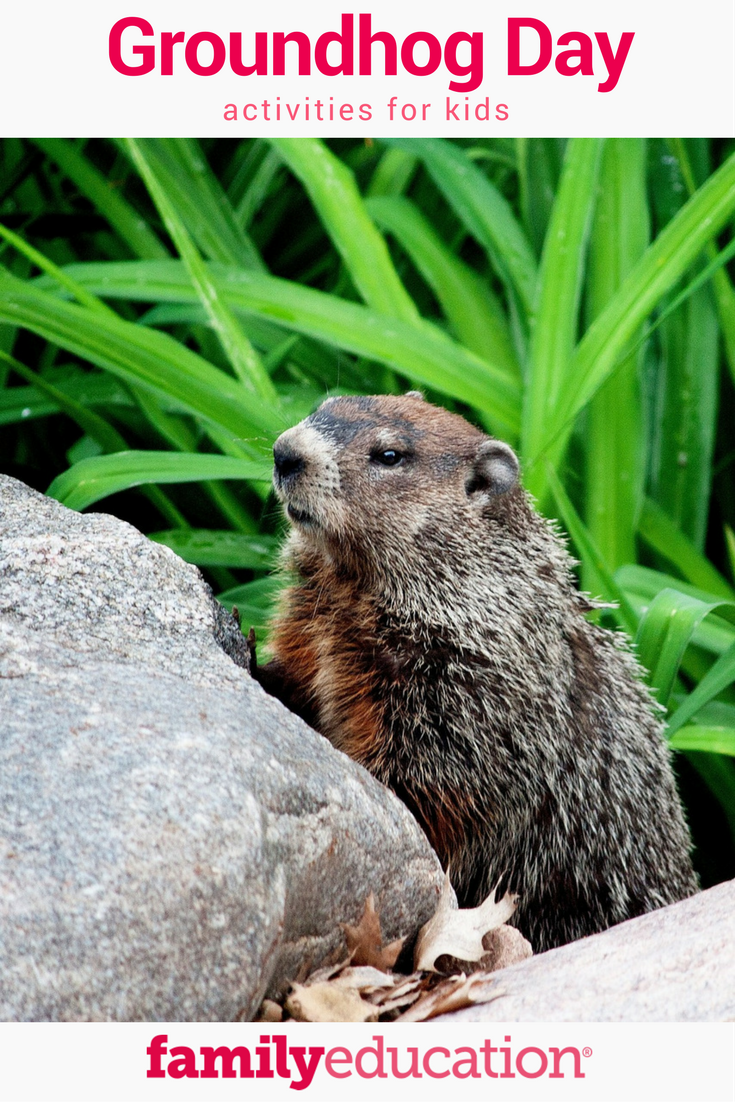4 Cute Groundhog Day Activities For Kids Get Rid Of Groundhogs Groundhog Day Activities Groundhog Day