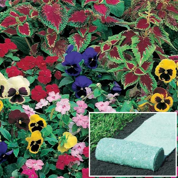 Shady Garden Roll Out Flowers   Lawn U0026 Garden   Outdoor   Walter Drake