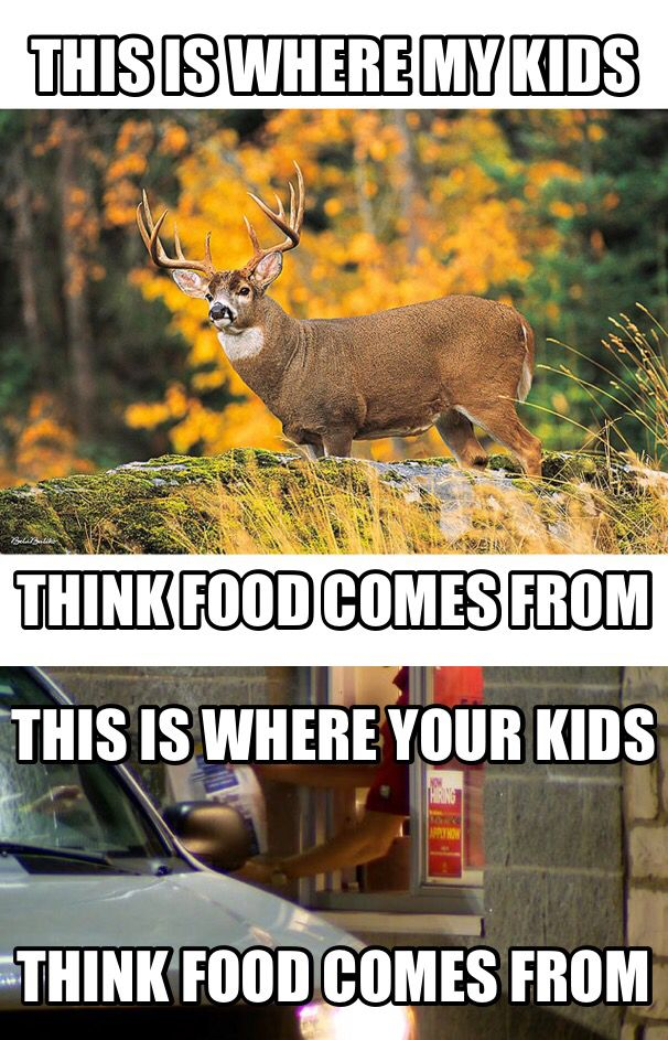 How Can You Be Anti Hunting And Eat Commercially Killed Drive Through Meat Hunting Humor Deer Hunting Humor Hunting Jokes