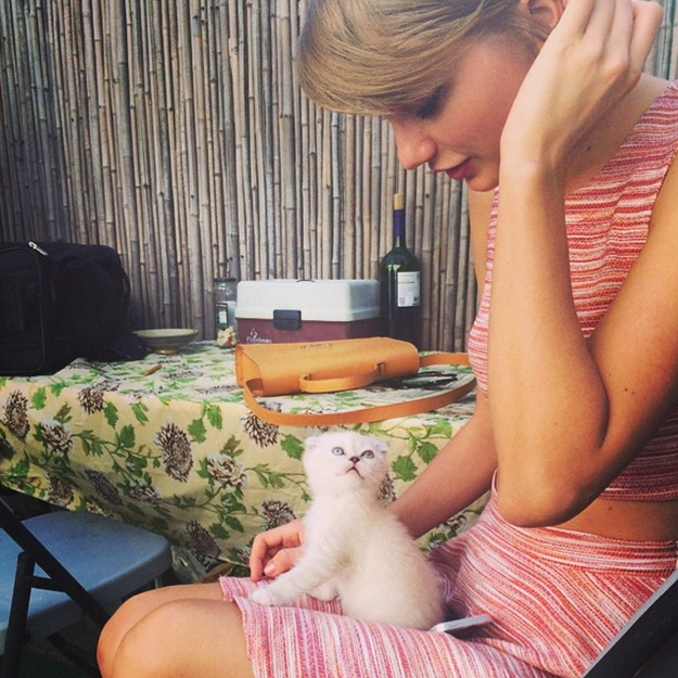 This is Taylor and her new kitten Olivia Benson. | Taylor Swift Got A New Tiny Cat