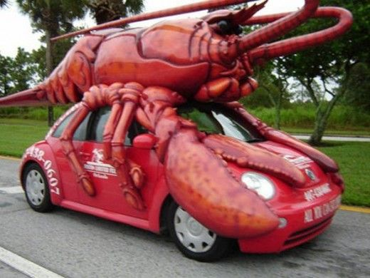 lobster VW look out  I saw this bug in Orlando, Florida a few years