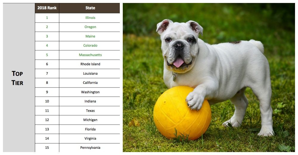 Kentucky Worst State For Animals Kentucky Breed Specific
