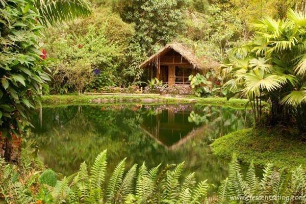 #Mindo- A #Paradise for #Birdwatchers