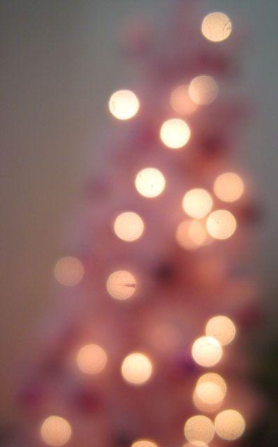 Kandeeland Our Pink Christmas Tree