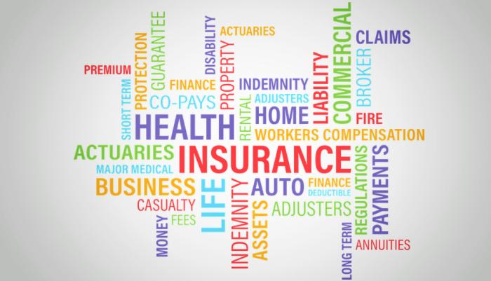 10 Largest Insurance Companies Worldwide | TechBullion ...