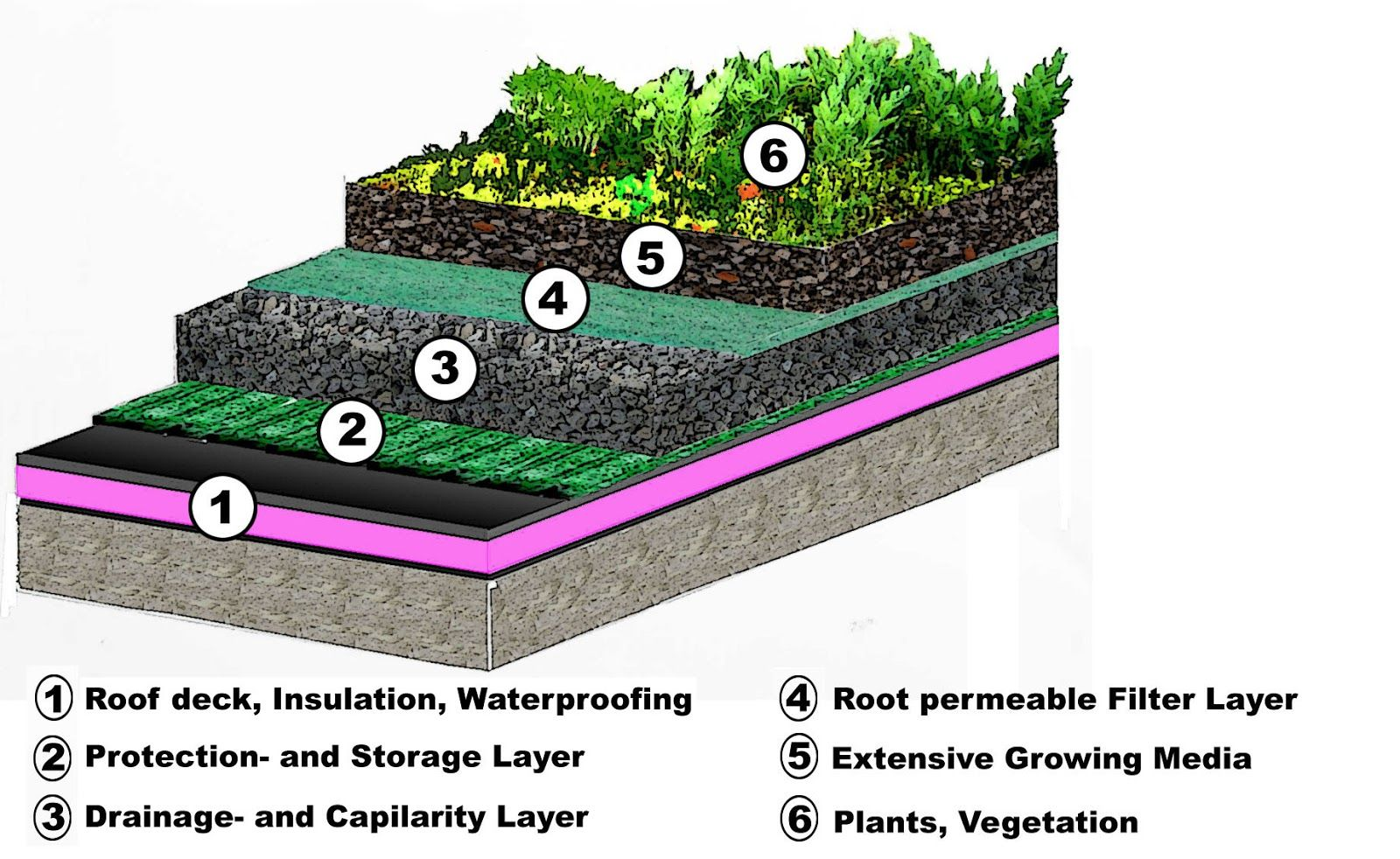 Green Roof Systems Functional Layers Of Typical Green Roof System Green Roof Green Roof Design Green Roof Benefits