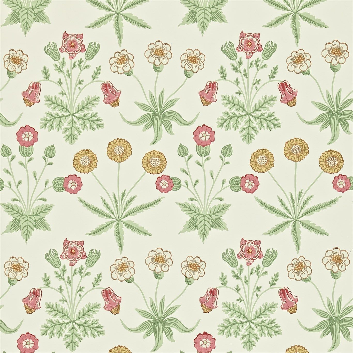Daisy Floral Wallpaper A Simple And Classic Patterned Featuring Pink Light Beige Golden Brown Flowers On Cream Backg
