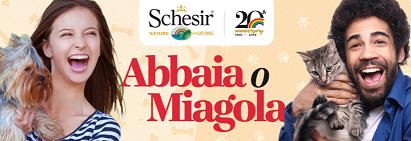 """Concorso Schesir """"Abbaia o Miagola il suo amore per Schesir"""" vinci fornitura"""
