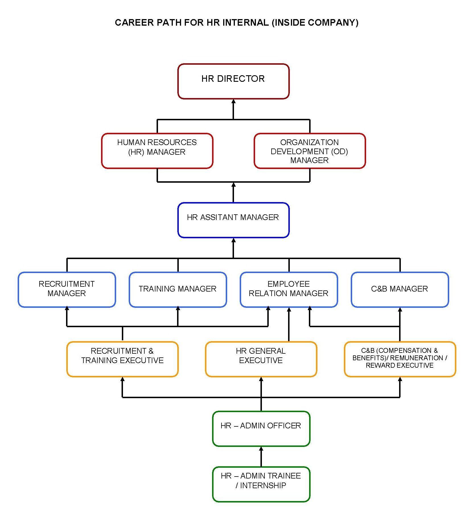 Internal Hr Career Path