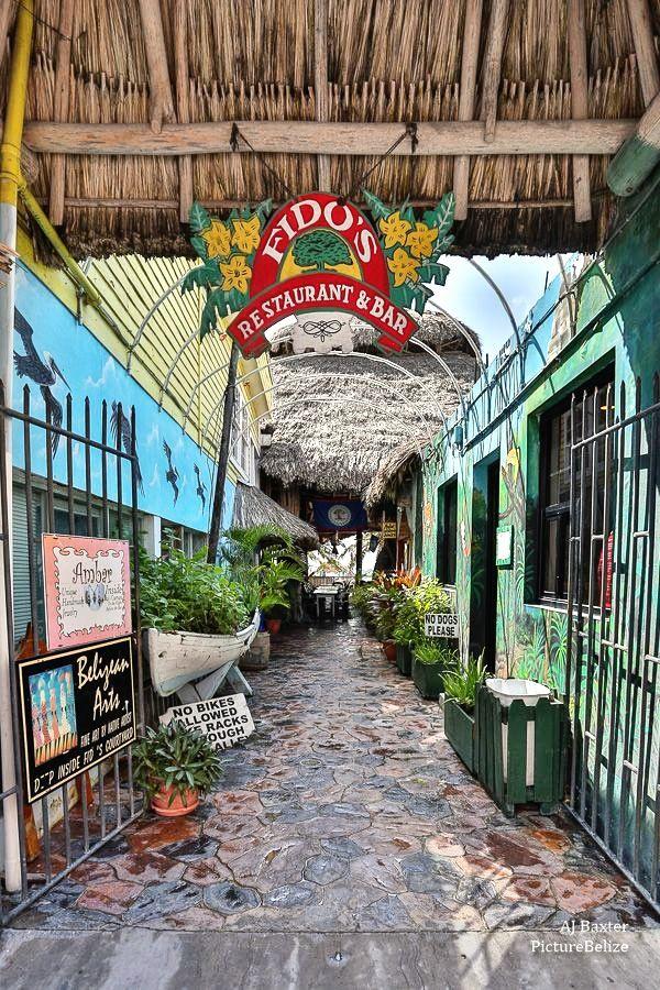 Fido's Fun Sports  |Fidos San Pedro Belize