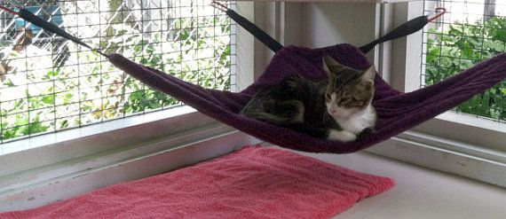 corner cat hammock   fort for home use cage bound kitties in shelters and at kitty beds   cat hammock pdf pattern   corner cat hammock   cat      rh   pinterest