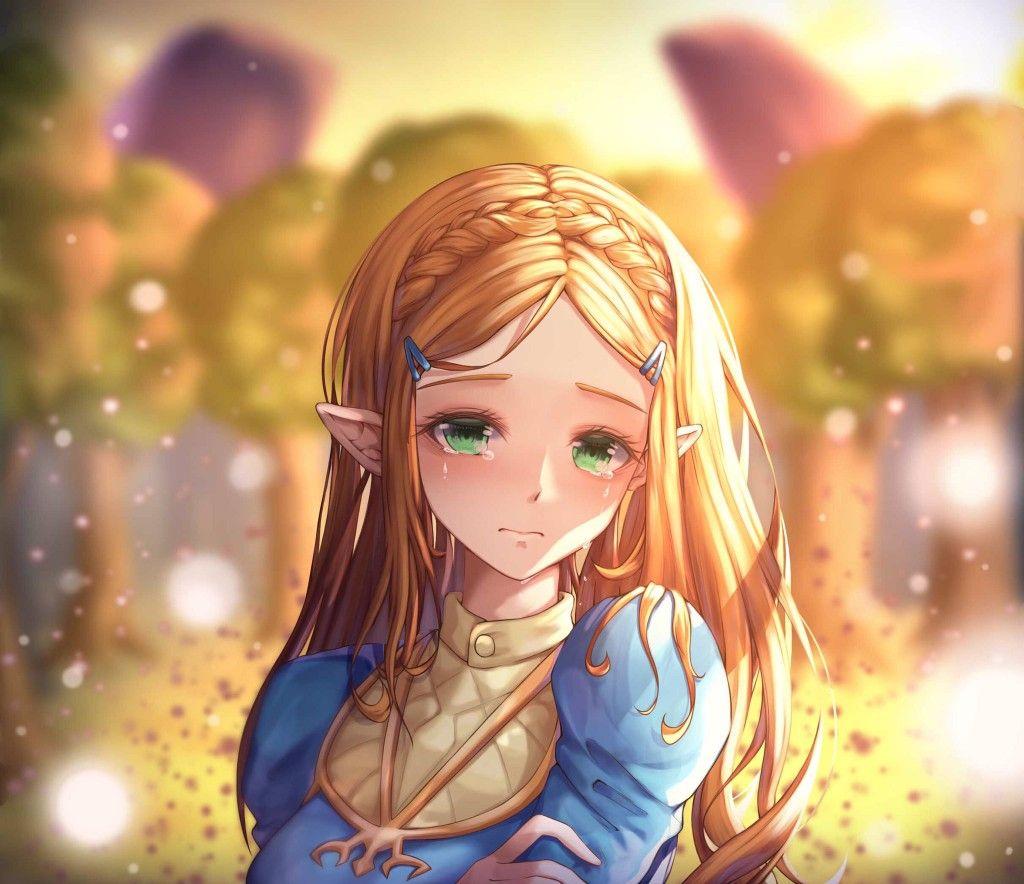 Legend Of Zelda Breath Of The Wild Art Princess Zelda Botw Richi09pa Legend Of Zelda Legend Of Zelda Breath Zelda Art
