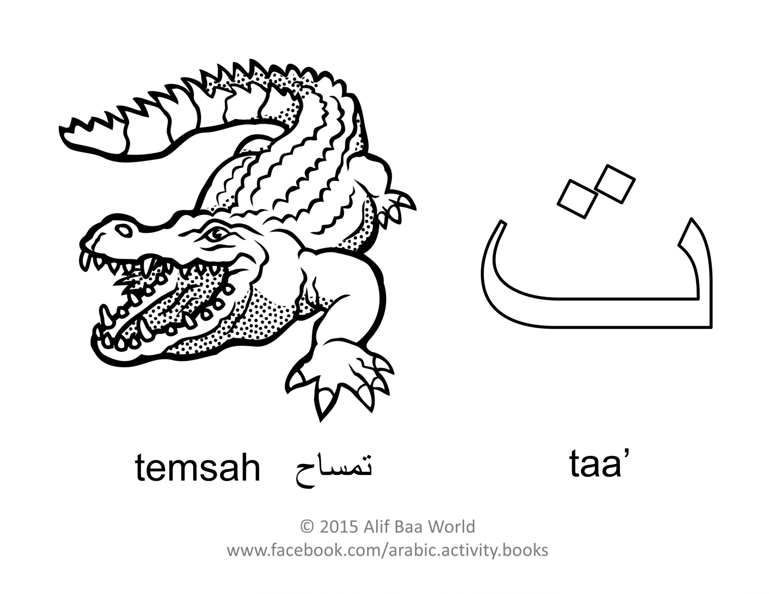 Coloring Pages Arabic Alphabet In
