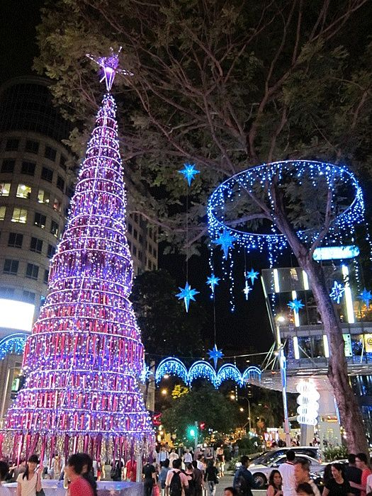 Top 10 Interesting Places To Visit In Singapore Orchard Road In 2020 Outdoor Christmas Lights Christmas Light Displays Christmas Lights