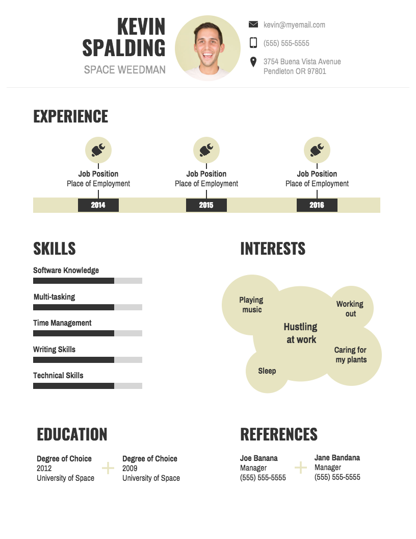 Professional Infographic Resume Infographic Resume Infographic