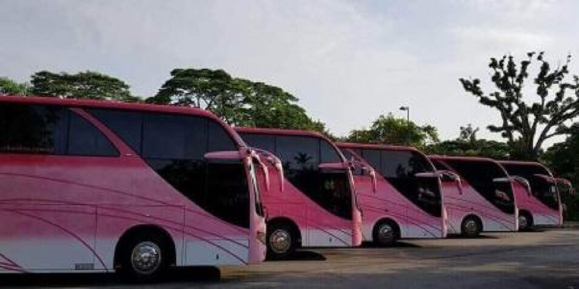Chanbus provides top quality services like shuttle bus