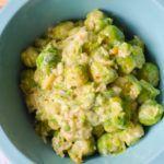 Ein extrem leckeres vegetarisches Low Carb Gericht, das sehr schnell und einfach nachzumachen ist. Sehr sättigend und voller Vitamine.