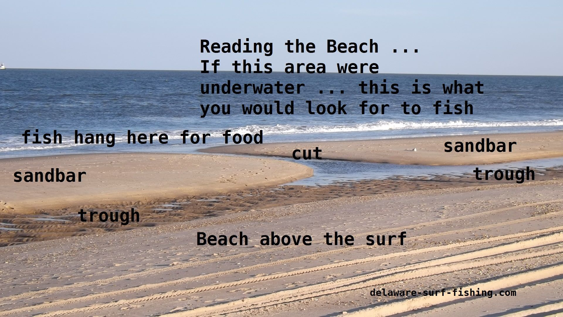 Reading The Beach To Fish Surf Fishing Tips Saltwater Fishing Beach