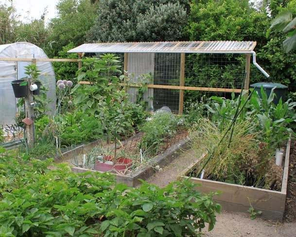 vegetable garden layout garden design irrigated zone examples - Garden Design Vegetable Patch