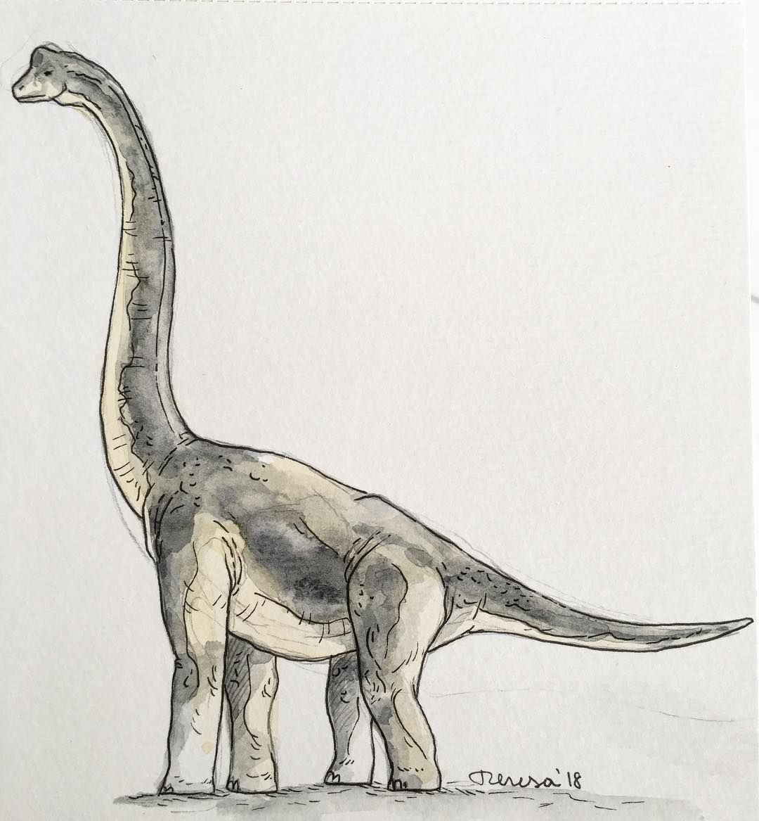 Brachiosaurus Dinosaur Jurassicworld Jurassicpark