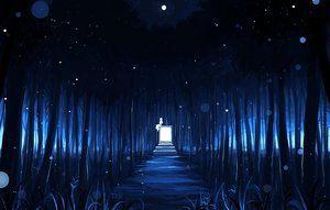 Rating: Safe Score: 90 Tags: blue dark forest matsuki_(mikipingpong) night original tree User: FormX