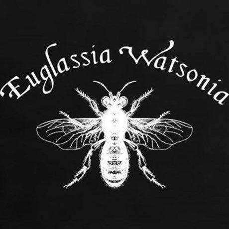 Elementary Euglassia Watsonia Bee Womens Classic T-Shirt Elementary Euglassia Watsonia Bee T-Shirt by MissThree